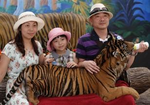 Тайландските зоологически градини