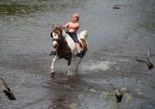 Панаир на конете в Апълби