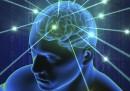 Създадоха най-подробния атлас на човешкия мозък