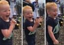 """2-годишно момченце """"подлуди"""" интернет с реакции (видео)"""
