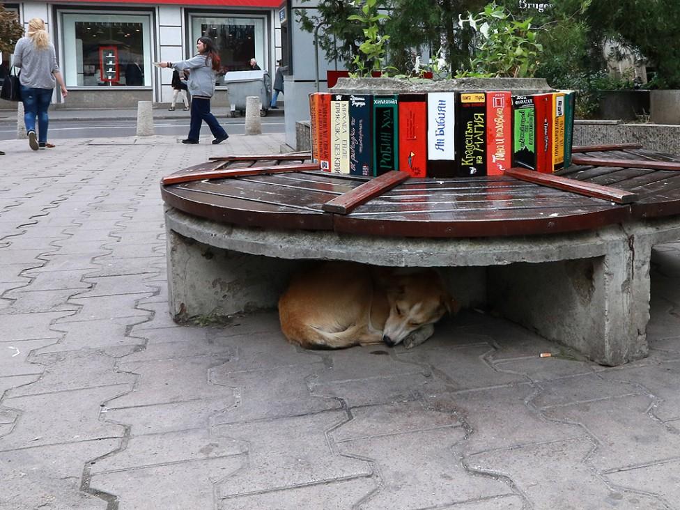 """- Художници доброволци изрисуваха пейките на площад """"Славейков"""" в София"""