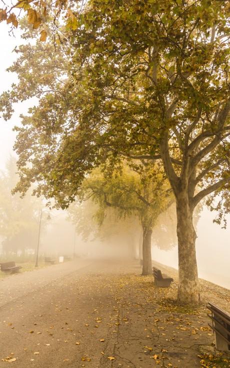 - В разгара на есента слънцето и топлината отстъпват пред облаците, дъжда и ниските температури