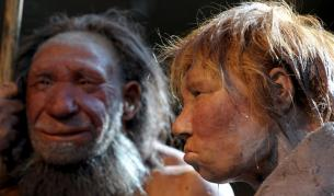 Учени: Неандерталците са ни предали болестни гени - Технологии | Vesti.bg
