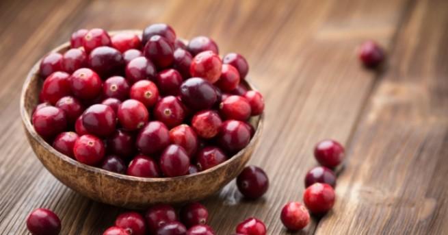 Снимка: Червената боровинка и всички нейни чудодейни свойства
