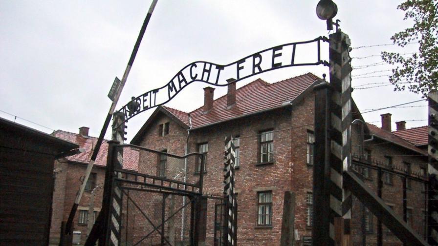 Историята на единствената българка, оцеляла в Аушвиц