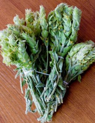 """<p>Мурсалският чай е приложим при редица други заболявания. При бронхит и бронхиална астма, при кашлица и възпаление на сливиците, при грип. <strong>Тази билка действа като естествен <u><a href=""""http://www.edna.bg/zdravoslovno/duh-i-tialo/prichiniteli-na-depresiia-4482051"""" target=""""_blank"""">антидепресант</a></u></strong><strong> </strong>и е една от малкото, които могат да се дават безпроблемно на деца под 5 години.</p>"""
