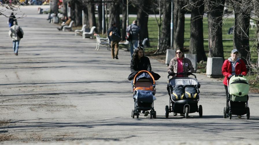 НАП започна проверки на търговците в парковете