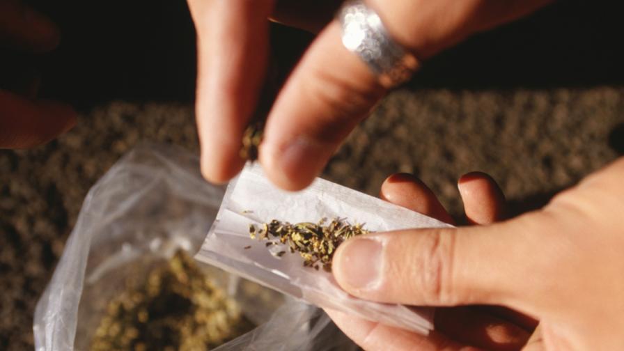 Съдът в Ловеч оправда мъж, гледал марихуана за мед. цели