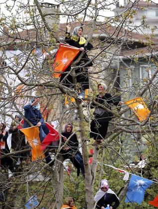 Привърженички на Ердоган в Истанбул са се покачили на дърво, за да го подкрепят