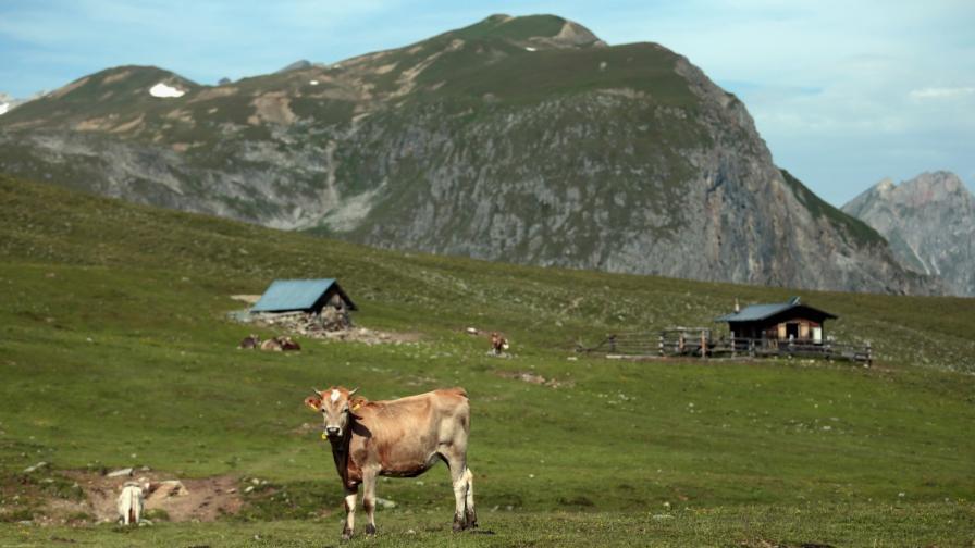 Офшорни фирми няма да имат право да купуват земеделска земя
