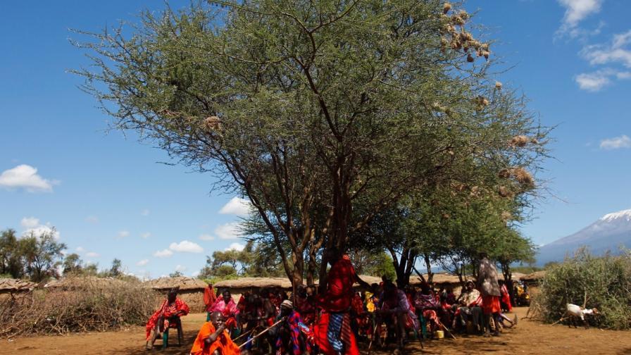 В Кения узакониха многоженството