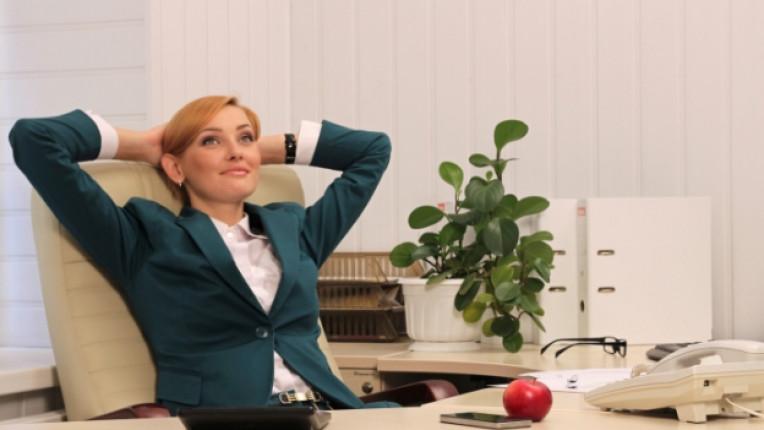 работа кариера професия дама жена офис