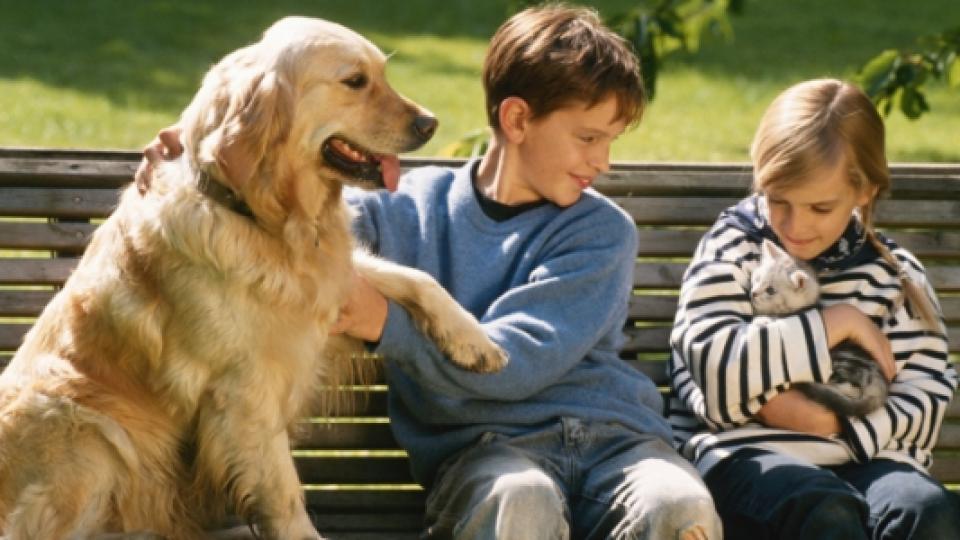 С какви болести може да ни зарази кучето