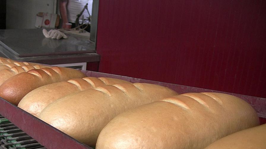 Браншовици: Цената на хляба няма да расте