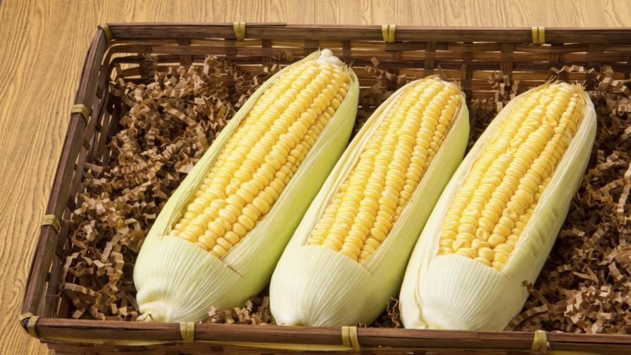 Американци купуват заводи за мелене на царевица у нас