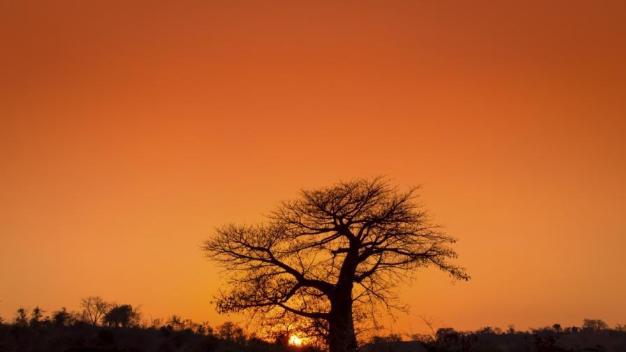 Малави – топлото сърце на Африка