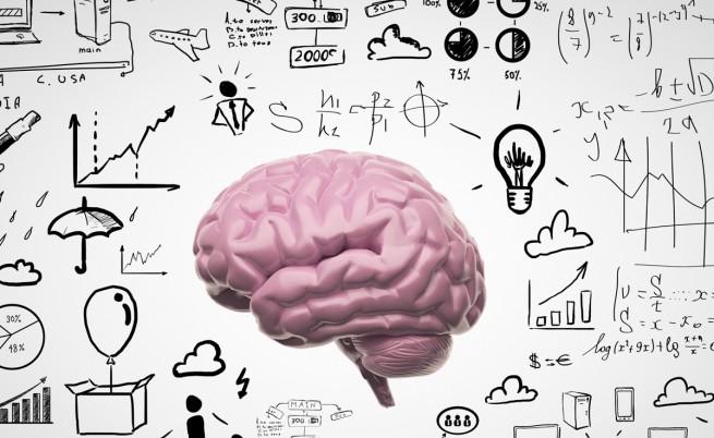 Учени: Част от мозъка остава млада завинаги