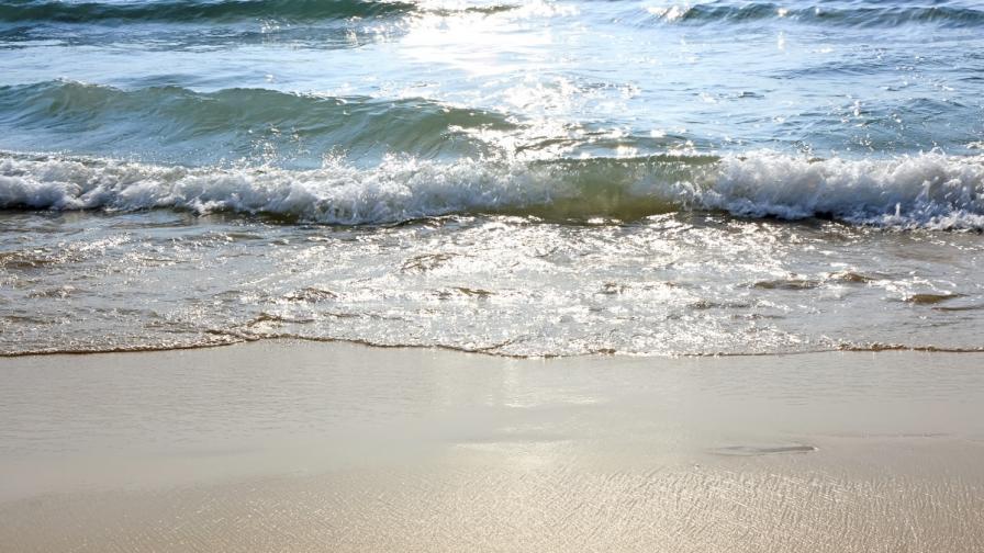 """МОСВ забрани строителството около плаж """"Корал"""""""
