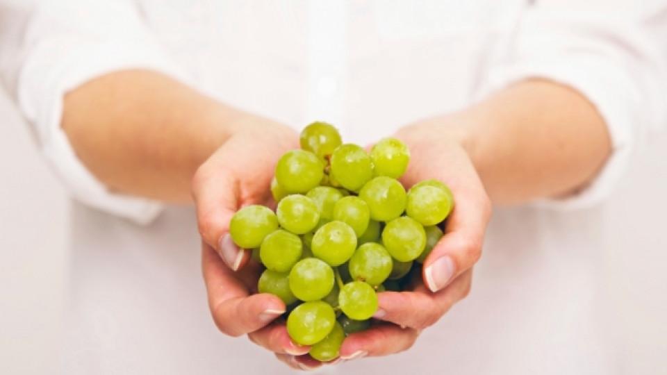 Шепа грозде на ден гони болестите