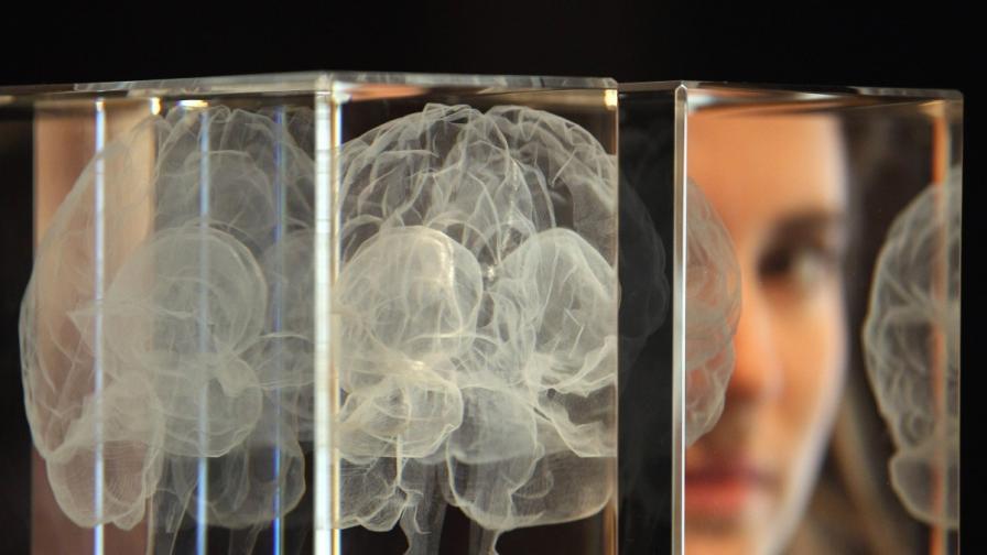 Мозъкът разбира значението на думите и когато спим