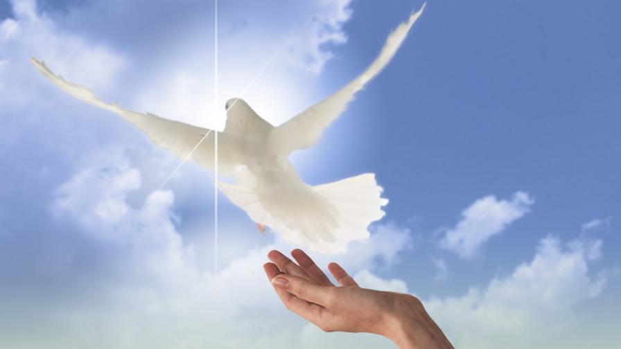 Отбелязваме Деня на мира