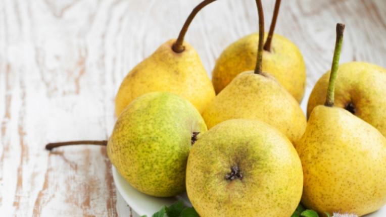 круша плод