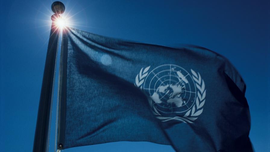 Върховния комисариат на ООН за човешките права ще разследва има ли масови гробове в Донецк