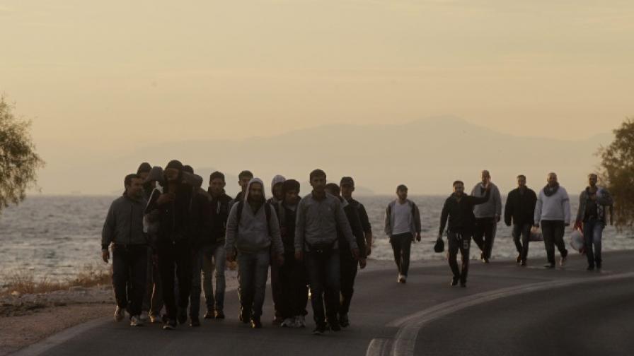 Хуманитарна криза в Егейско море