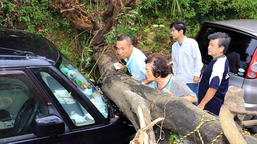 Вонфон взе две жертви в Япония, десетки са ранени