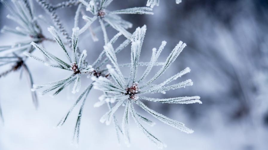 Седмицата започва със студ и сняг