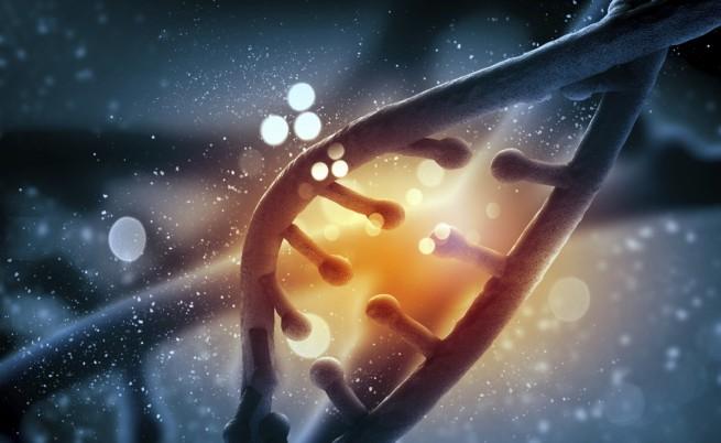 Учени лекуват рак с генномодифицирани клетки