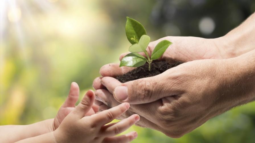 Може ли филантропията да променя обществата