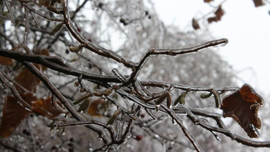Дъжд и сняг на втория коледен ден
