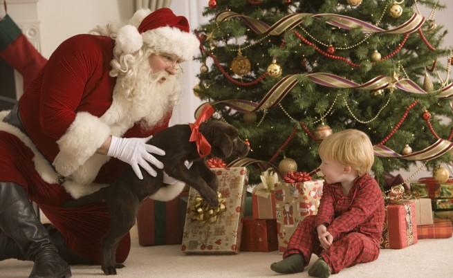 Успял ли е Дядо Коледа да раздаде подаръците