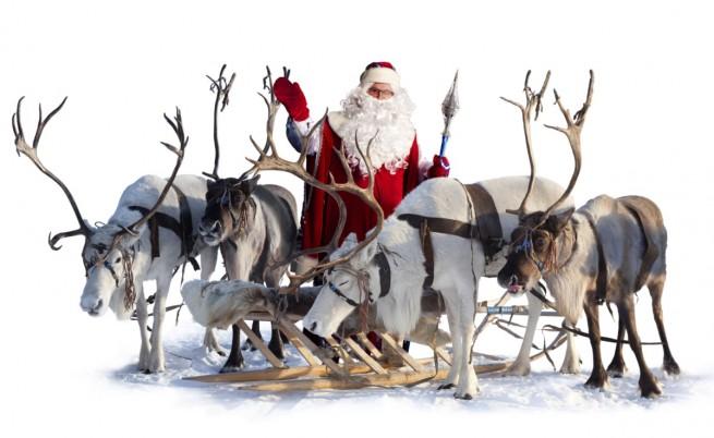 Елените на Дядо Коледа или защо Рудолф не може да е Рудолф