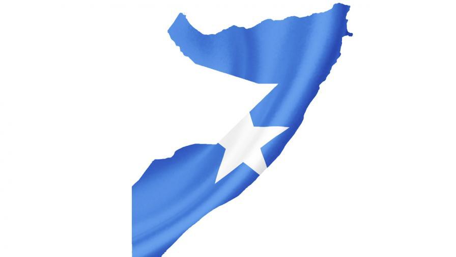 """""""Даеш"""" завзема територия и в Южна Сомалия"""