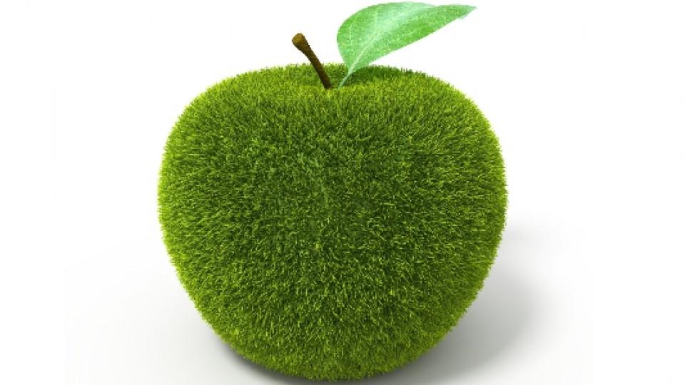 Органичната храна