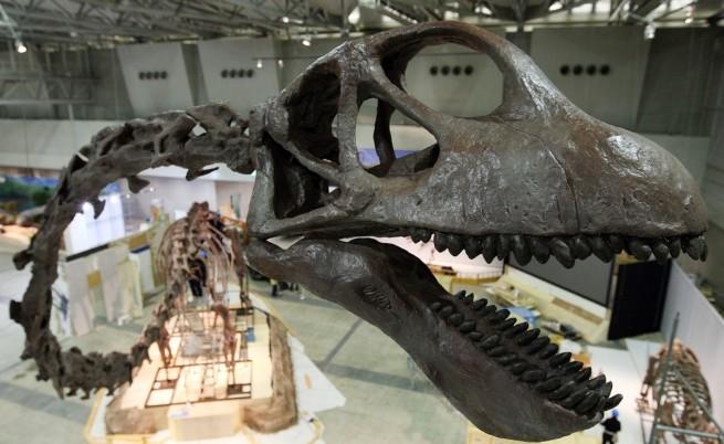 Откриха нов динозавър, наречен