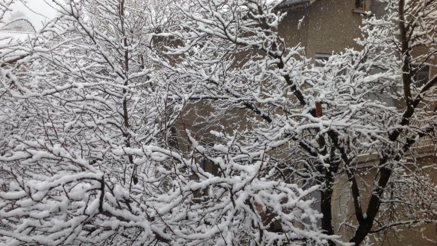 София осъмна с нова снежна покривка