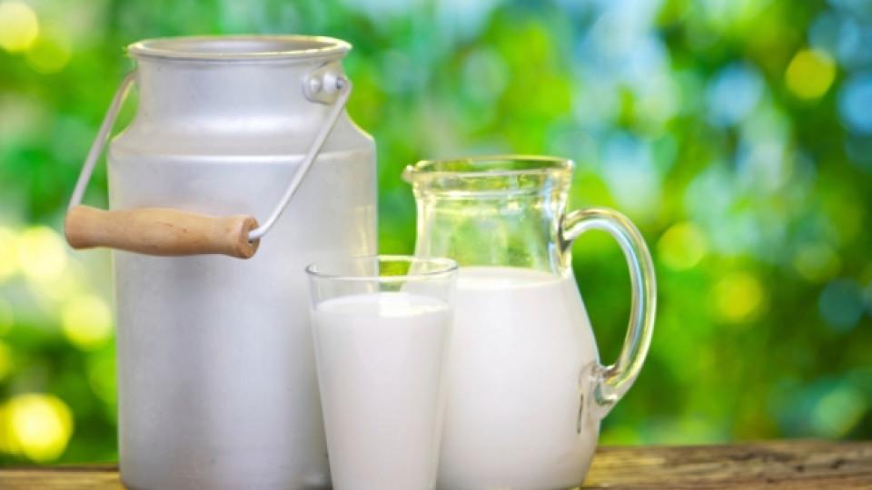 Полезно ли е нискомасленото мляко?