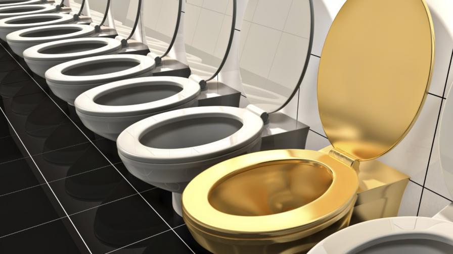 Тоалетната може да се окаже златна мина