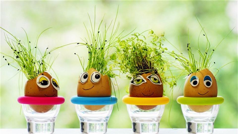 Как да си направите саксийки от яйца за Великден