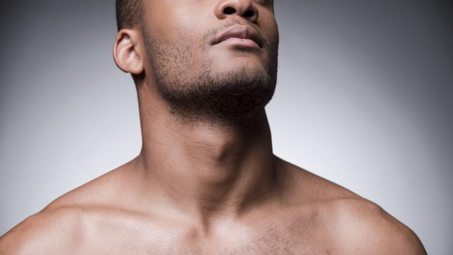 Откриха защо човекът има брадичка