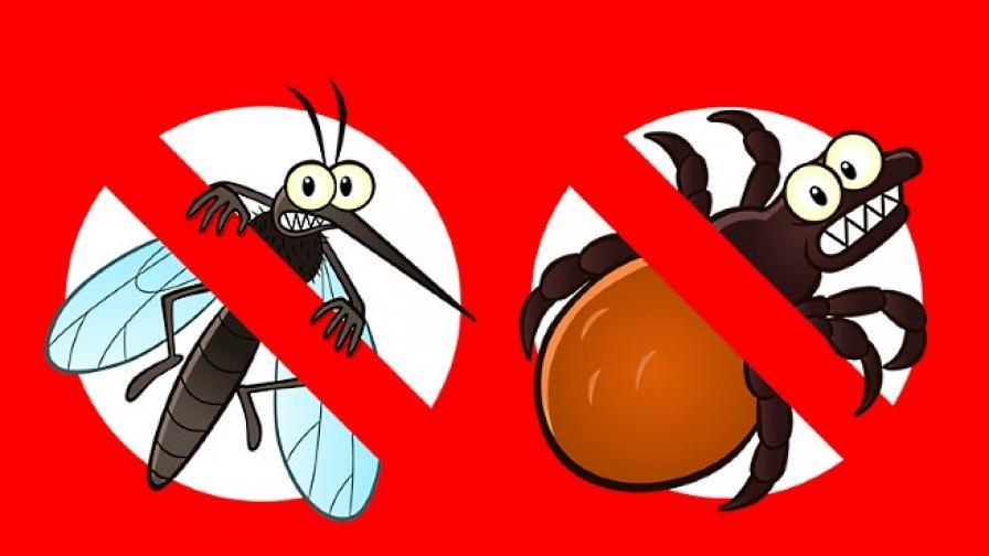 Внимание: кърлежи и комари!