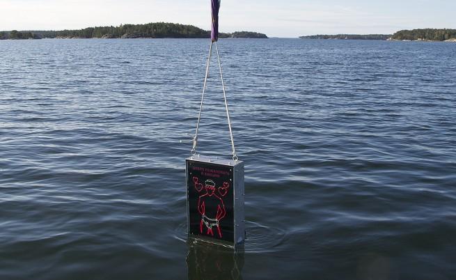 Шведски пацифисти гонят руски подводници с гей сонар