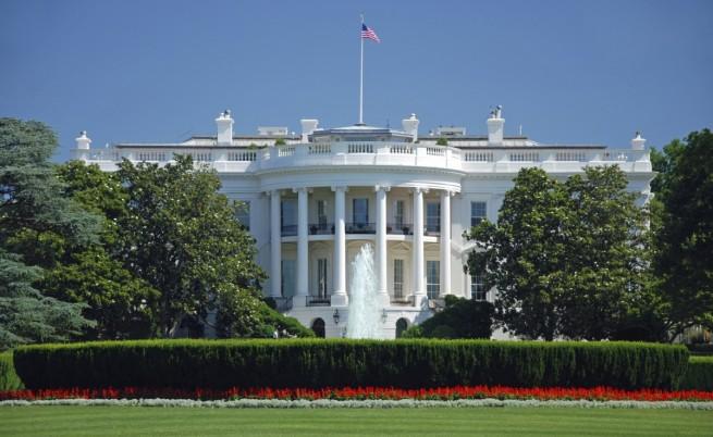 Белият дом с план за спасяването на пчелите