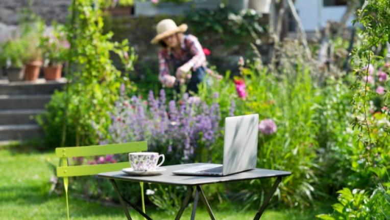 градина двор
