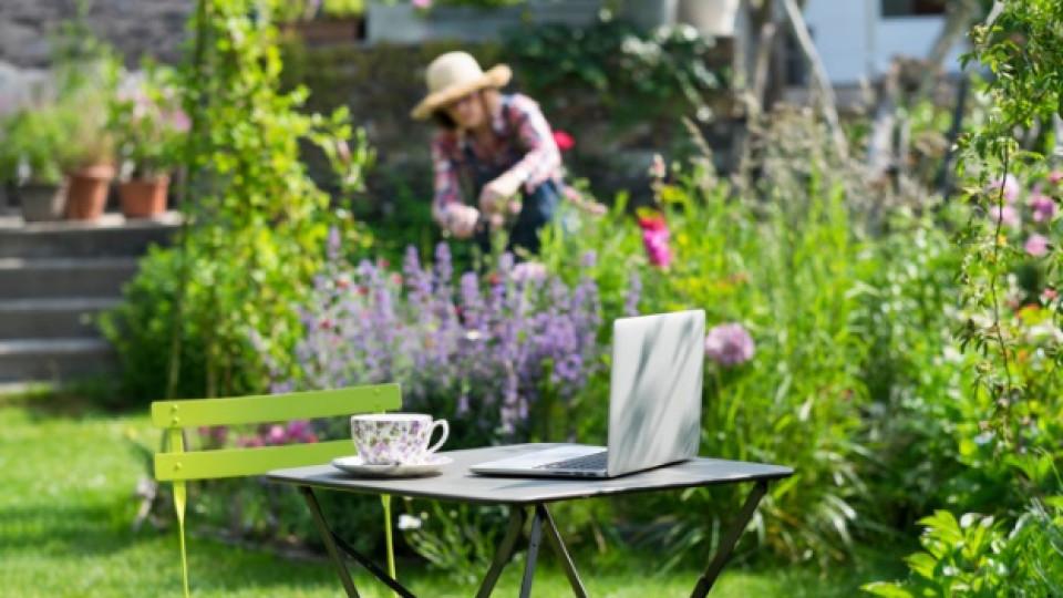 Как да създадем най-прекрасната градина
