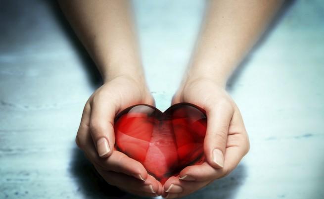 Днес е Световният ден на доброволния и безвъзмезден кръводарител