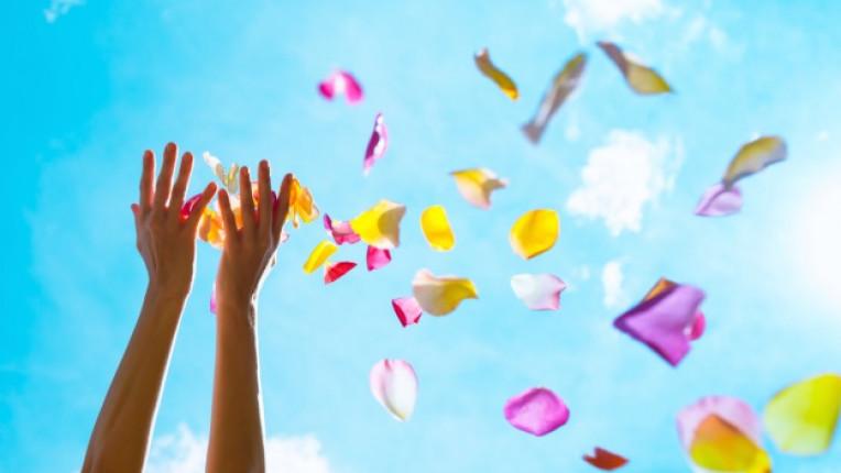 листа роза радост щастие любов небе